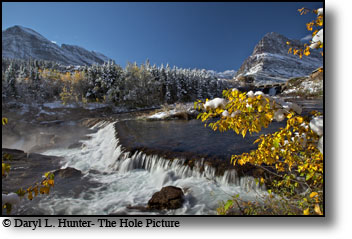 Autumn in Glacier National Park, golden aspen, waterfall