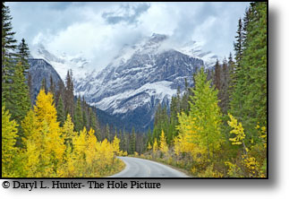 Autumn color, Emerald Park, winding road, Yoho National Park, British Columbia