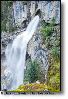 Panther Falls on the Icefields Parkway