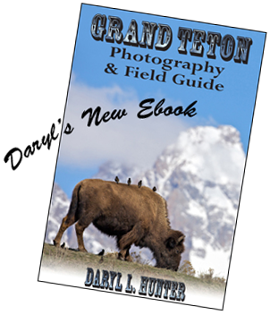 Grand Teton Photography and Field Guide