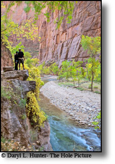 Hikers, Virgin river narrows, Zion National Park