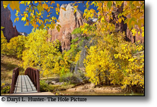 Bridge to beauty, autumn color, Zion National Park